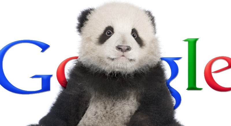 MonkeyPickles Tech News: Microsoft Bing exposes Google Panda