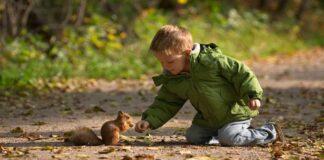 Fluffy Squirrel Happy