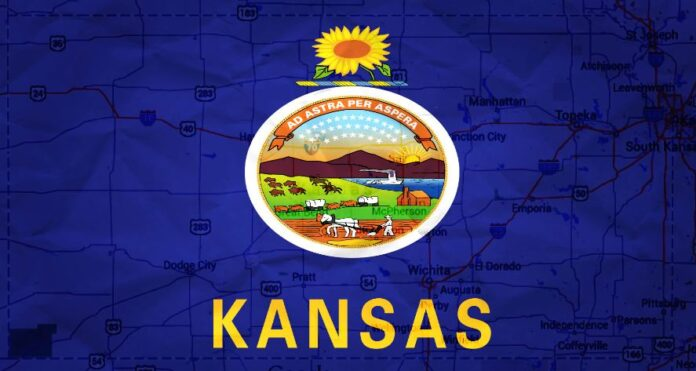 Twerking Models Kansas