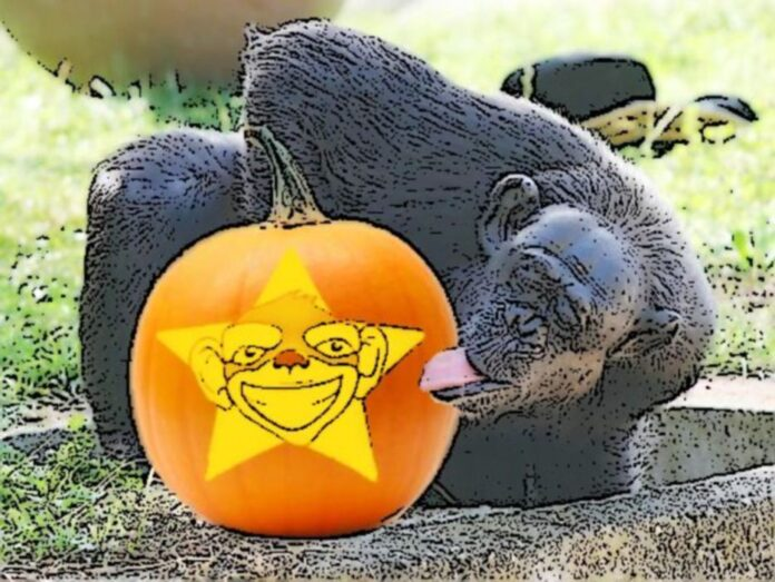 Monkey Pickle Your Pumpkin