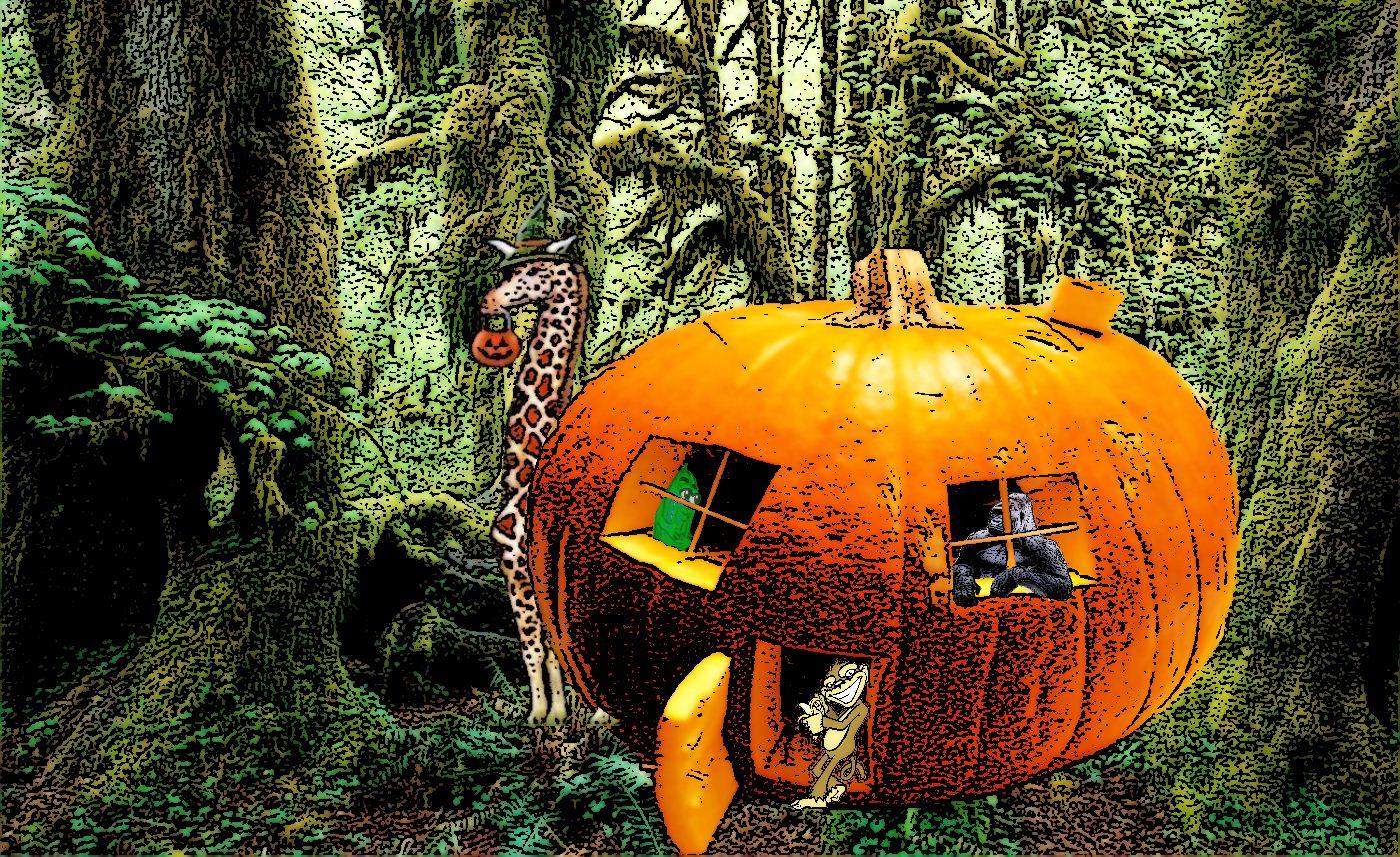 Pumpkin HQ