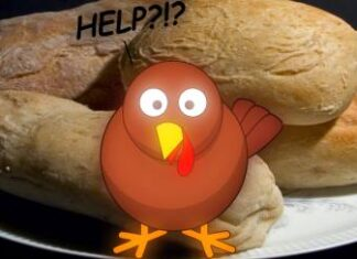 turkey, thanksgiving,