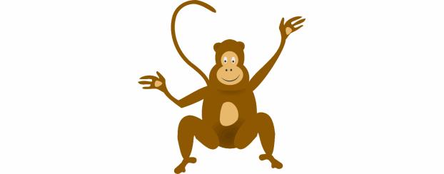 monkey monkey.11