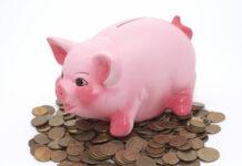 piggy bank, saving money, pink pig