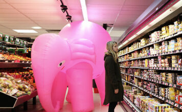 elephant in the room, pink elephant