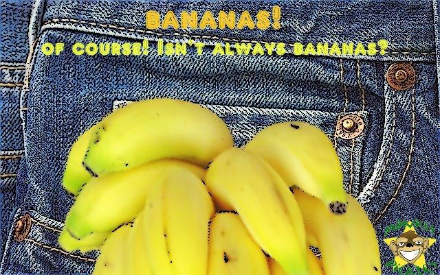 pocket bananas