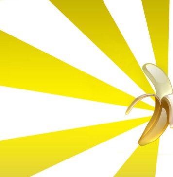 Bananas, Banana Facts, It's Bananas