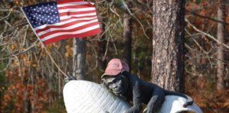 monkey, patriot, patriotic monkey, july 4, independence day