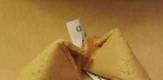 fortune cookie, daily peel, monkey pickles, fun, community