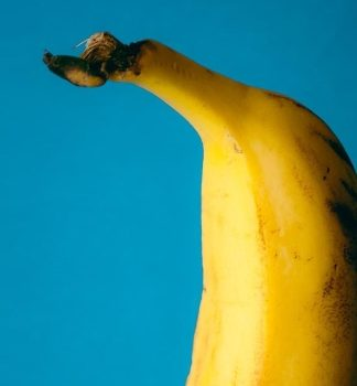 put a banana in your ear, banana, funny, banana nutrition, vitamins in bananas, banana facts, banana trivia