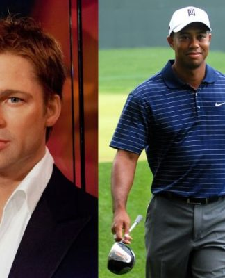 Monkey Pickles, Daily Peel, celebrity battle, Brad Pitt, Tiger Woods
