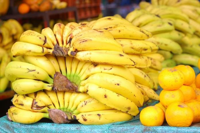 monkey pickles, funny articles, it's bananas, banana wars