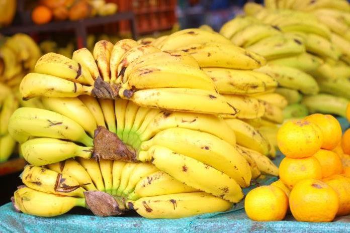 monkey pickles, funny articles, it's bananas, banana wars