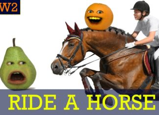funny videos, cool people, Annoying Orange, Monkey Pickles, how to