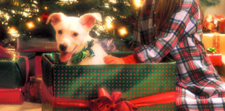 5 Useful Tips for Gift-Giving Etiquette