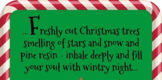 Monkey Pickles Christmas Tree