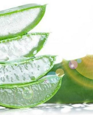 Household Uses for Aloe Vera