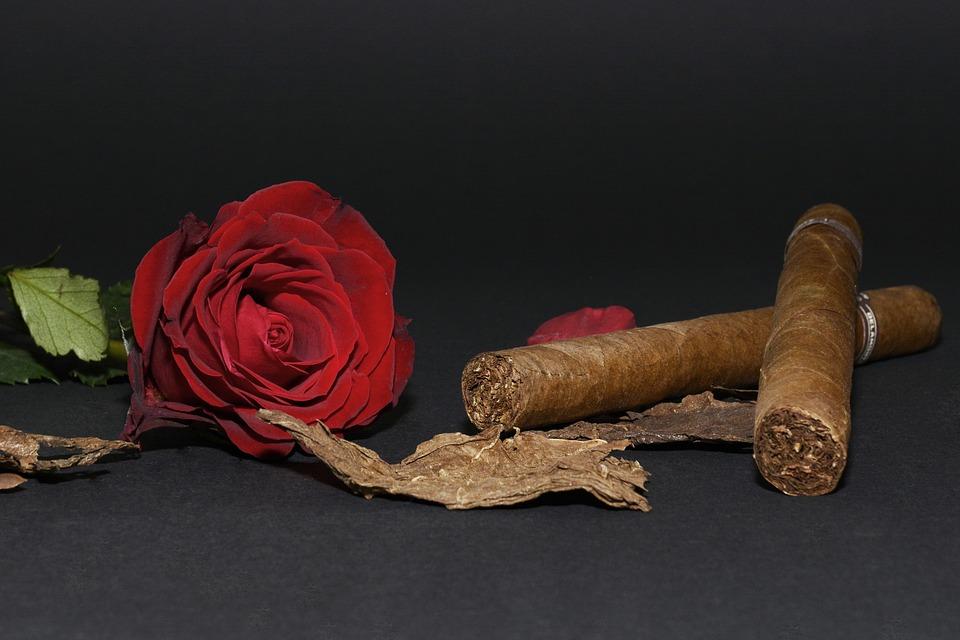 Cigar Aficionado, Valentines Day Gifts For Him, Valentines Day Gifts for Her