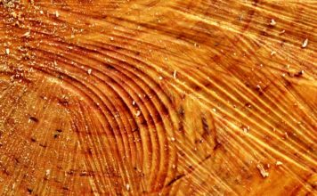 Household Uses for Sawdust