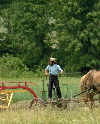 Amish Jokes, Amish Pick Up Lines, Funny Amish, Funny Pick Up Lines
