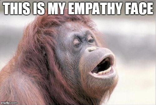 Empathy Monkey Meme, Best Monkey Memes, Funny Monkey
