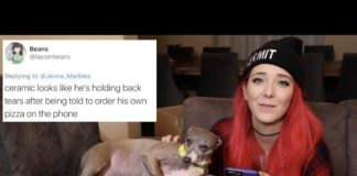Jenna Marbles, Dogs, Roasting, Mean Comments, Funny